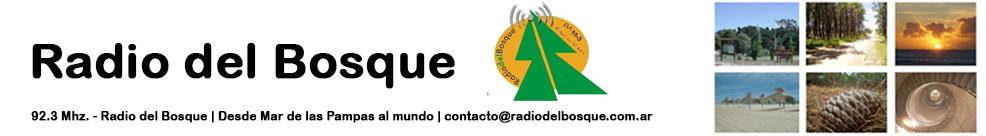 Radio del bosque